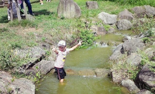 夏休みに子連れで観光!奈良の涼しい格安スポット10選