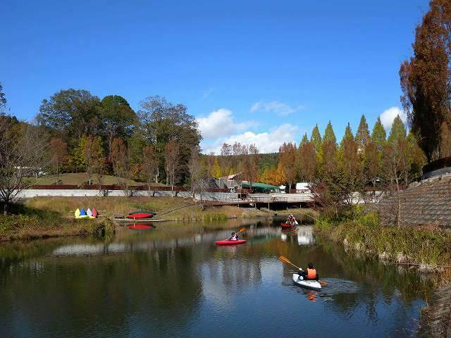 カブトムシ&クワガタが採れる! 関東近郊の人気キャンプ場4選