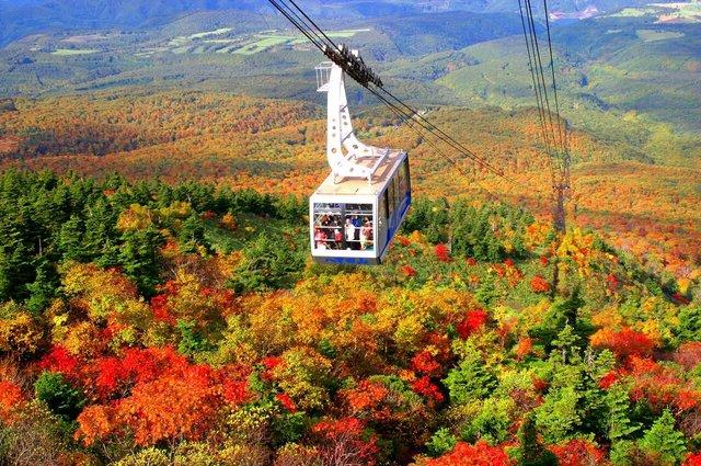 絶景の紅葉が楽しめる! 全国のロープウェイスポット15選