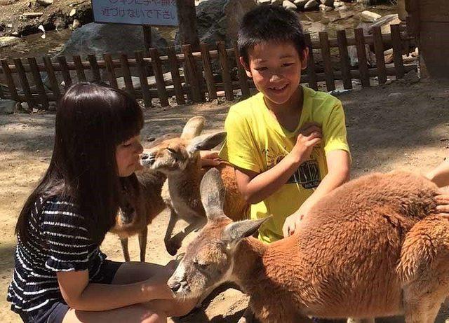 【札幌】6~9歳が遊べる&満足! おすすめ観光スポット10選