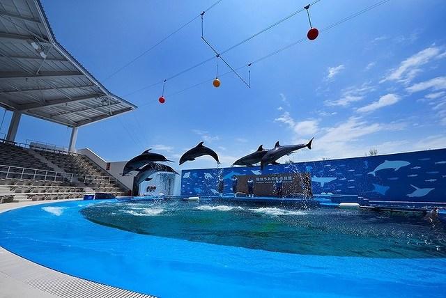 【仙台】0~2歳の子連れにおすすめ&人気観光スポット7選