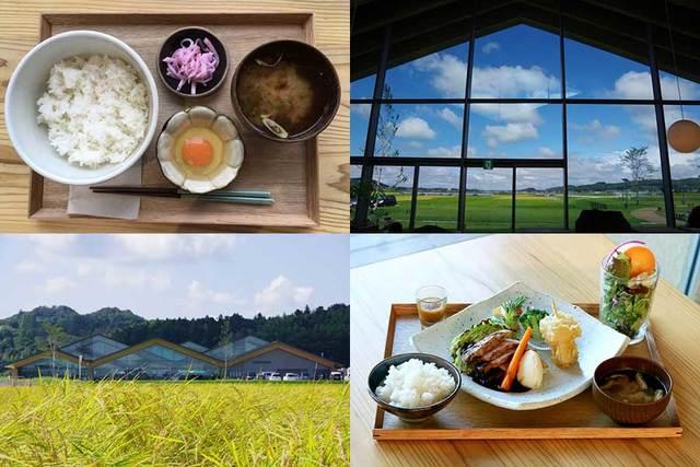 栃木県のおすすめ「道の駅」14選 特別体験&イチゴ&温泉も多数