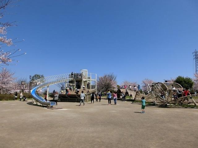 江東区の1日遊べるおすすめ公園6選 すべて駅近&遊具が充実!