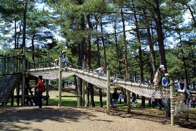 【関東】大型アスレチックがある公園13選 子供無料で1日遊べる