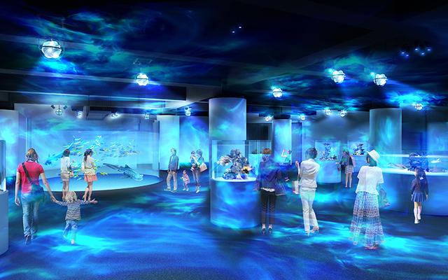 神戸市に新感覚の没入型水族館OPEN 生き物展示とアートが融合!