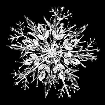 雪の結晶を手軽に観察 Amp デジカメで撮影するには? 子供とお出かけ情報「いこーよ」