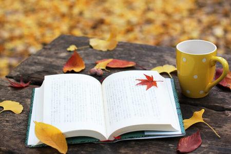 【 現代文の勉強法 】 国語から始めよう 前編