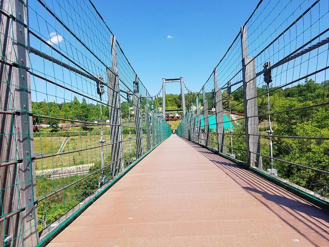ハーベストの丘 名物【吊り橋】』 堺・緑のミュージアム ハーベストの ...