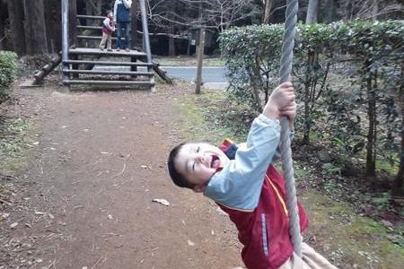 【神奈川】幼児でも遊べるアスレチックのあるスポット6選