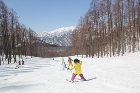 小学生以下無料!リフト券のあるスキー場!