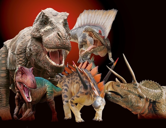 静岡大恐竜博の基本情報