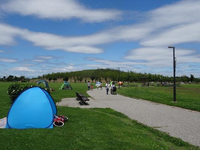 県営まつぶし緑の丘公園