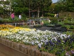 瀬田農業公園 フラワーランド