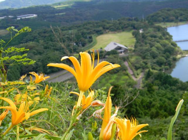 白岳自然公園