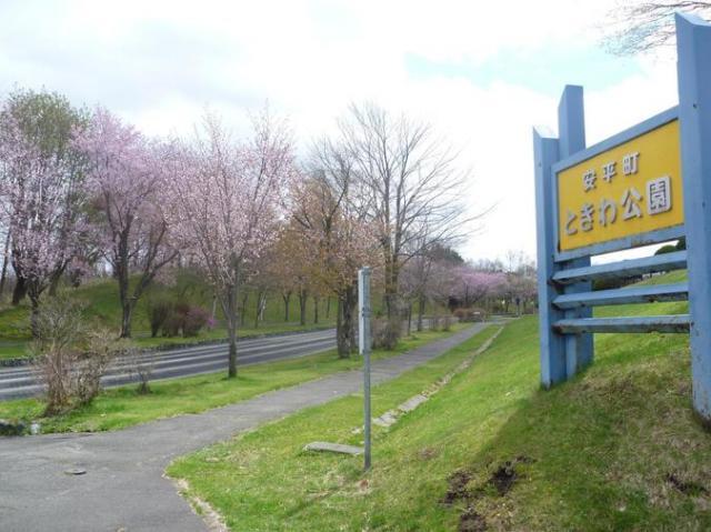 ときわ公園(安平町)
