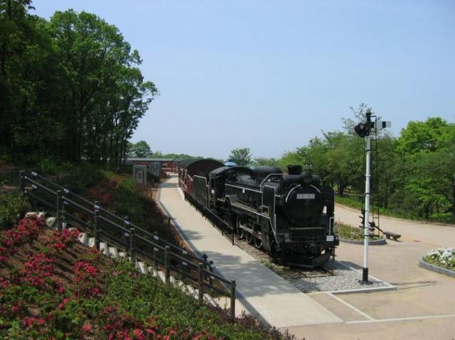 東福寺野自然公園