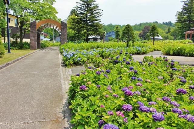 東山総合運動公園