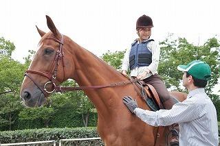 乗馬クラブクレイン大阪