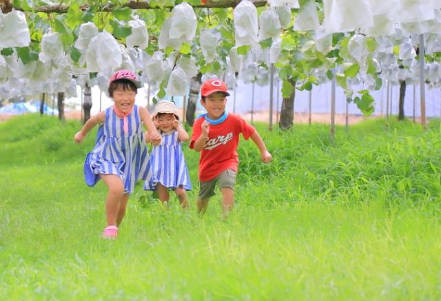 久和田農園