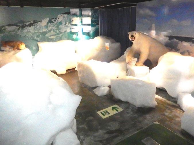 北海道立オホーツク流氷科学センター ギザ