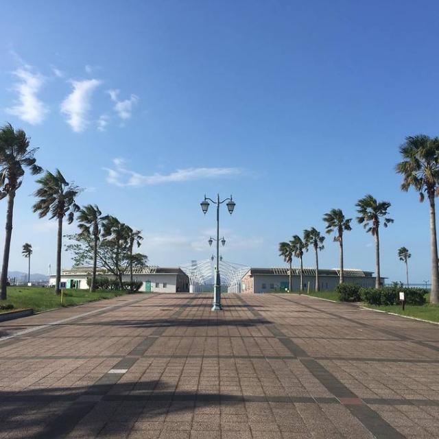 二色の浜公園 海浜緑地