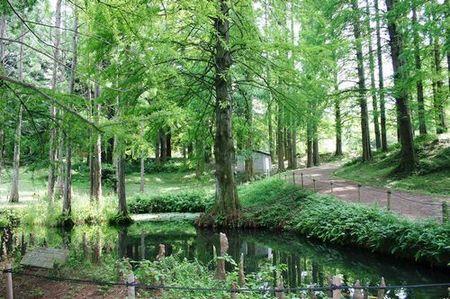 大阪市立大学理学部附属植物園