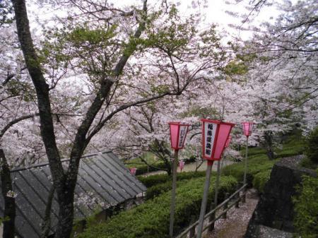 小浜町公園(とけん山公園)