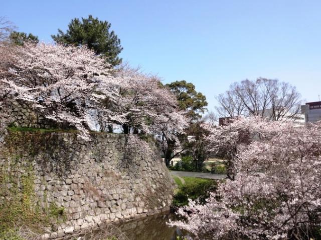 久留米城跡(篠山神社)