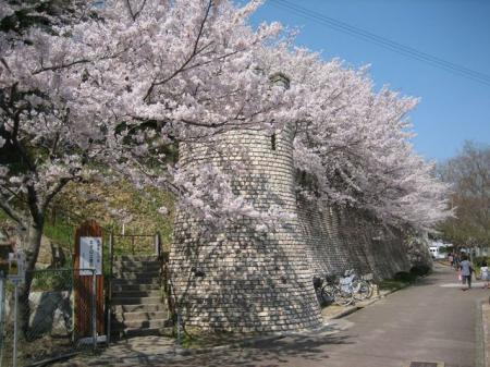 太子山公園(太子町)