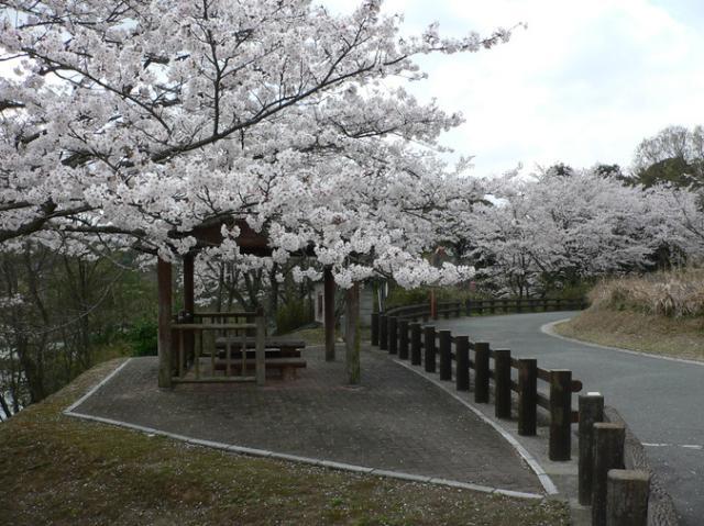 本庄池自然歩道