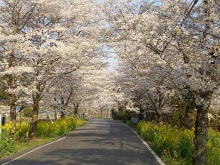 太平山自然公園