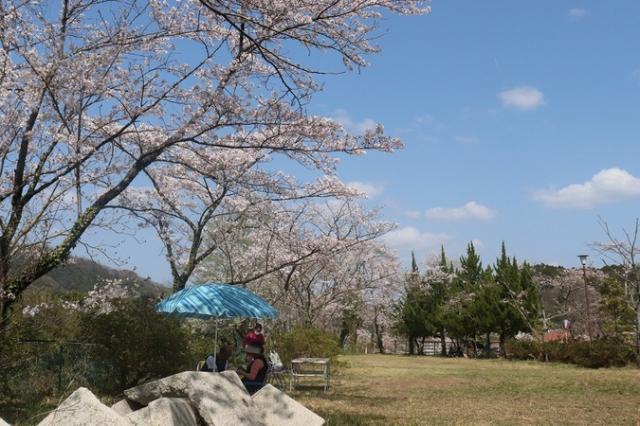 金毘羅山公園(川本町)