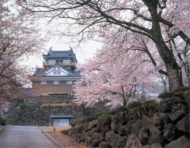 亀山公園(大野市)