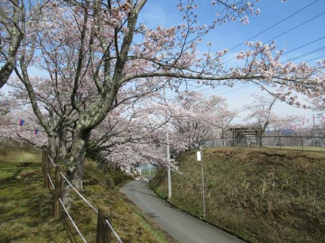 西山公園(常陸太田市)