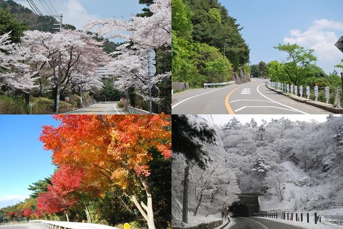 施設写真】 春夏秋冬四季折々の風景が見られます!』芦有ドライブ ...