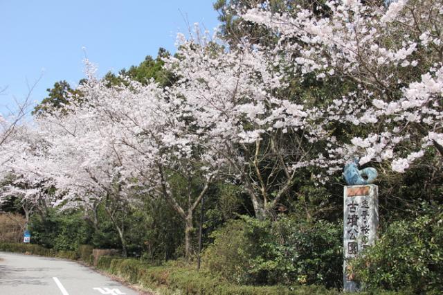 志乎・桜の里古墳公園