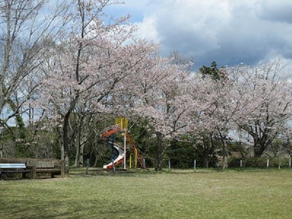 羽黒山公園(行方市)