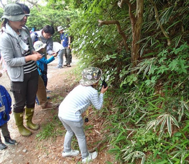 六甲山まちっ子の森