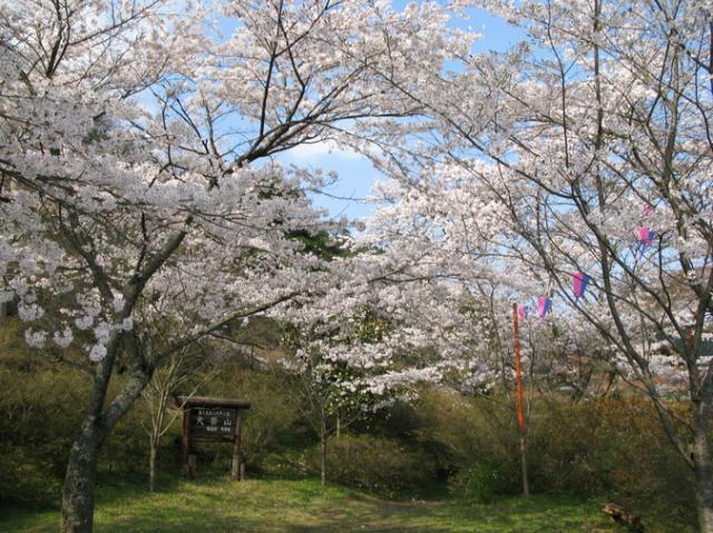 県立自然公園矢祭山(矢祭山公園)