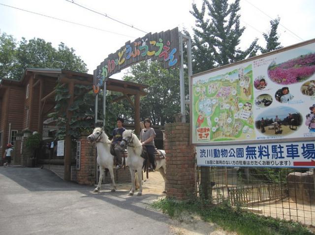 渋川動物公園