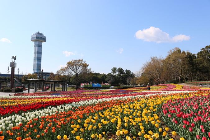 木曽 三川 公園 センター