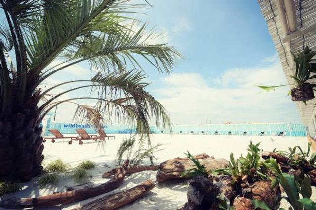 WILD BEACH(ワイルドビーチ)
