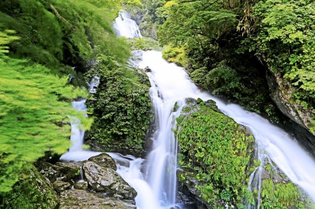 銚子滝(土佐郡大川村)