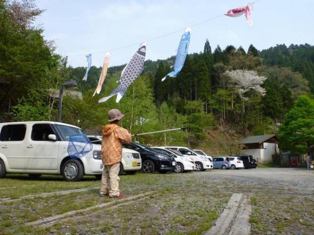 京都市左京区・花背 山村都市交流の森