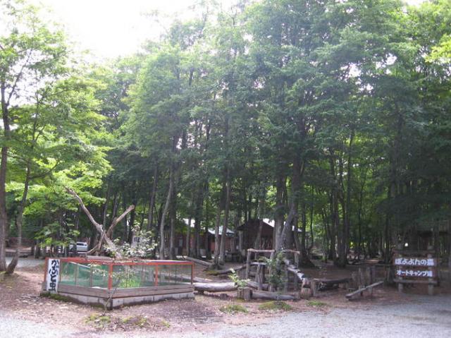 ぽよよんの森オートキャンプ場