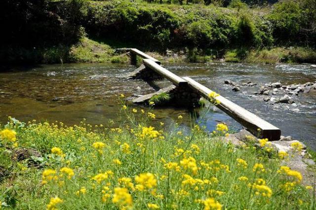 早瀬の一本橋