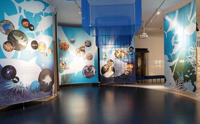 展示室「うみしる」(静岡県水産技術研究所)