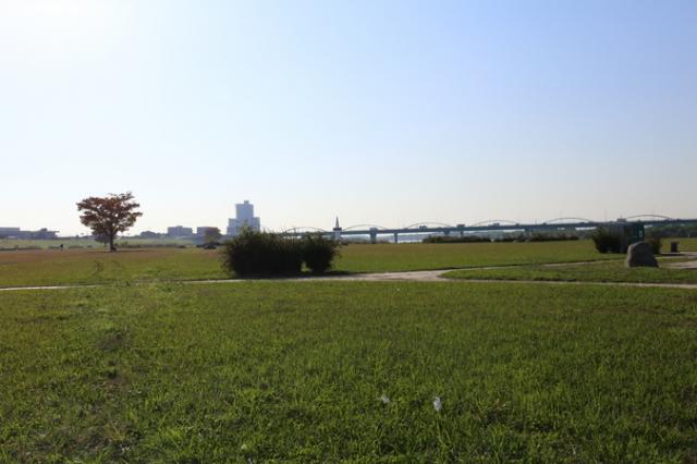 淀川河川公園(枚方地区)