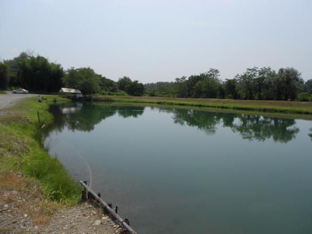 なら山沼漁場 (釣り堀/マス釣場)