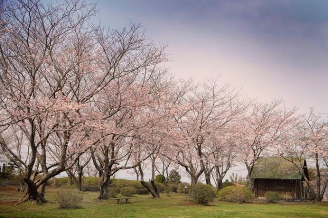 権現山公園(潮来市)